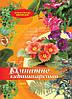 Кімнатне квітникарство. Енциклопедія квітникаря