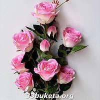 Куст розы натуральный не пресс.