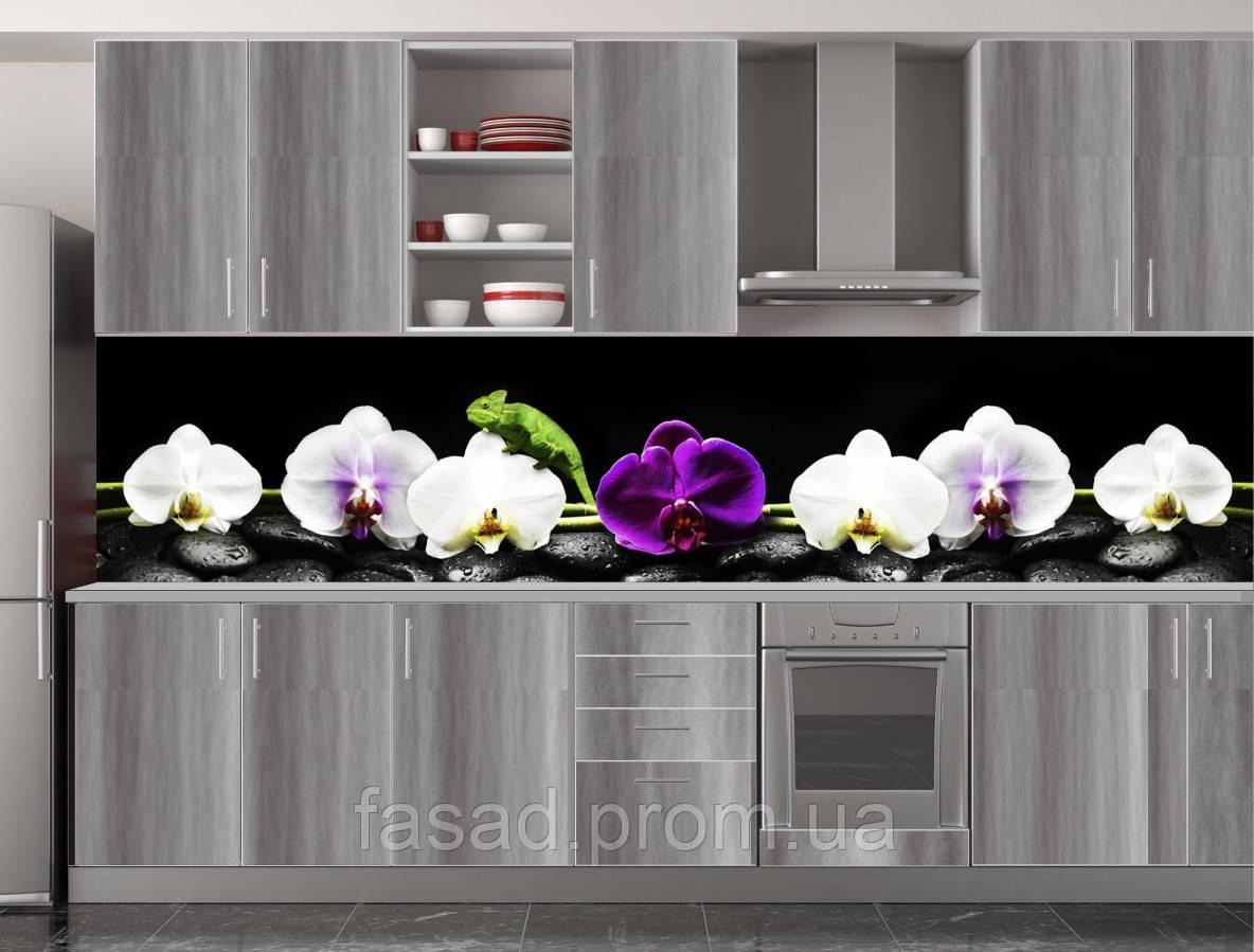 Скіналі для кухні (ламінована наклейка) Кухонний фартух розмір 600*3000 мм. Код-10439
