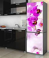 Наклейка на холодильник 600*2000 мм. Код-10964