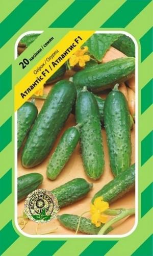 Семена Огурец пчелоопыляемый Атлантис F1 20 сем Bejo Zaden 2076