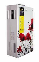 Газовая колонка Thermo Alliance JSD20-10F2 10 л стекло (цветок)