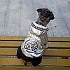 """Комбинезон, костюм зимний для собаки """"SILVER"""". Одежда для собак, фото 2"""