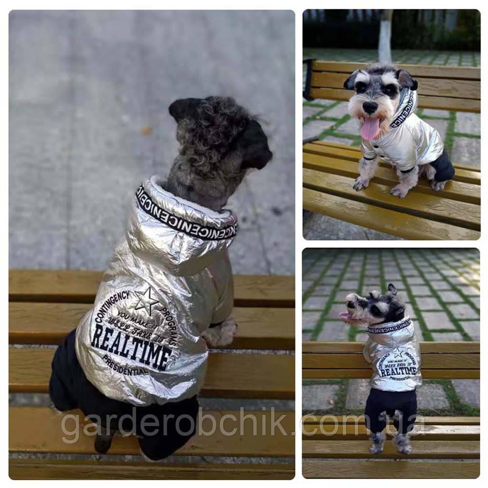 """Комбинезон, костюм зимний для собаки """"SILVER"""". Одежда для собак"""