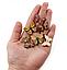 Бабочки микс 10 шт. (20х28 мм), фото 2