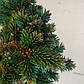 Picea abies Red Devil, фото 3
