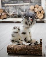 Новая Собака марионетка . Собака на кресте