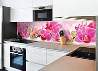 Кухонный фартук Нежная орхидея (пленка для стеновых панелей кухни, розовые цветы, фотопечать)