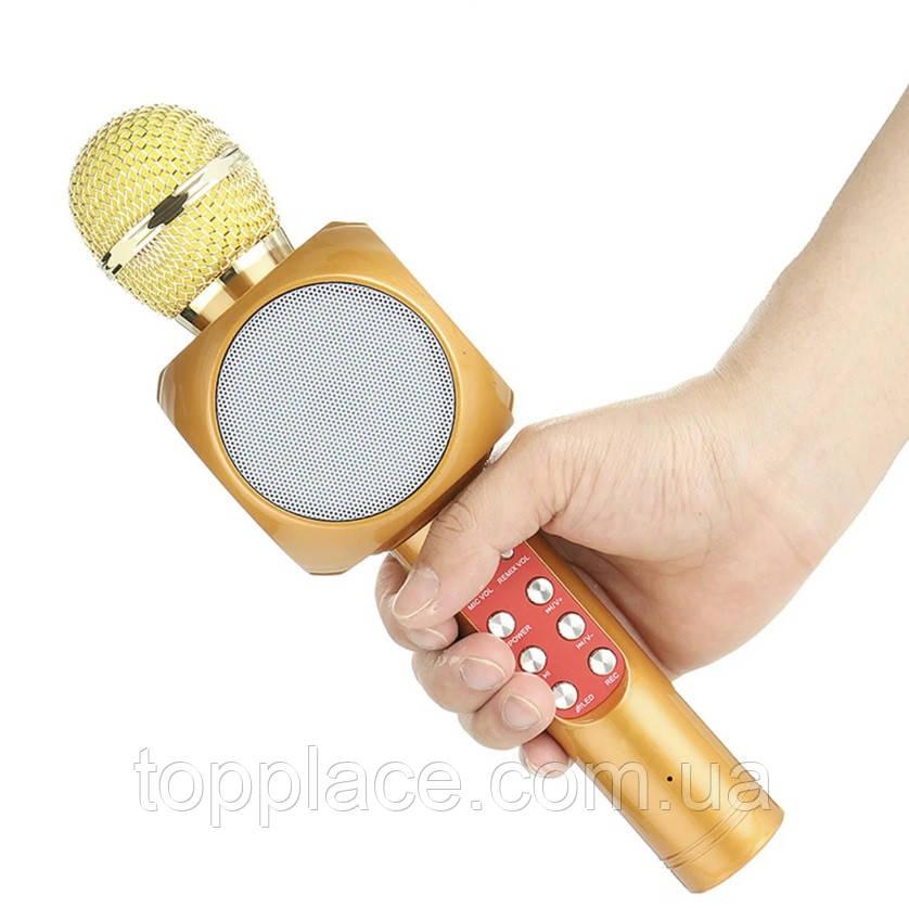 Портативний Bluetooth караоке мікрофон WSTER WS-1816 з підсвічуванням, Brown