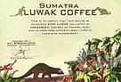 Знаменитый легендарный кофе Копи Лювак от фабрики Montana молотый кофе в мини-упаковкена одну чашку 8г, фото 2