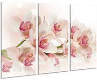 Красивая комнатная модульная картина на холсте в спальню 3 в 1 Orchid AMD 097, 96х70 см