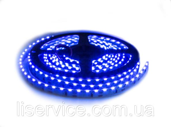 Светодиодная лента 9,6 Вт/м. 12V IP33  синяя