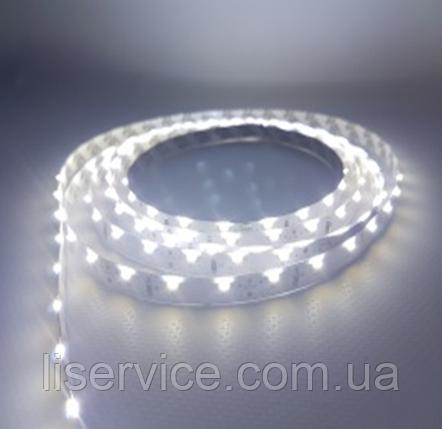 Светодиодная лента 9,6 Вт/м. 12V 15000К IP33 ультрахолодного белого свечения, фото 2