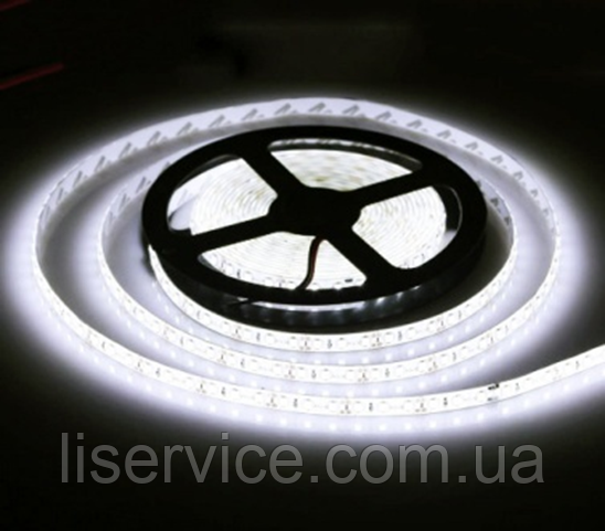 Светодиодная лента 9,6 Вт/м. 12V 6500К IP33  холодного белого свечения
