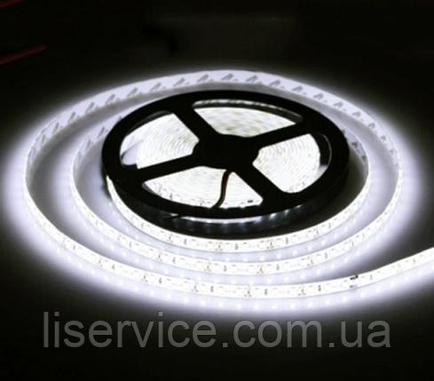 Светодиодная лента 9,6 Вт/м. 12V 6500К IP33  холодного белого свечения, фото 2