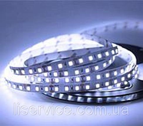 Светодиодная лента 14,4 Вт/м. 12V 17000К IP33  ультрахолодного белого свечения, фото 2