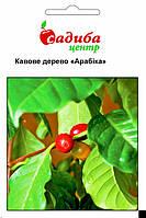 Кофейное дерево Арабика 1 г