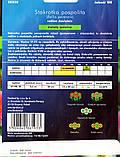 Маргаритка Суміш помпонная (F) 500 насінин, фото 2