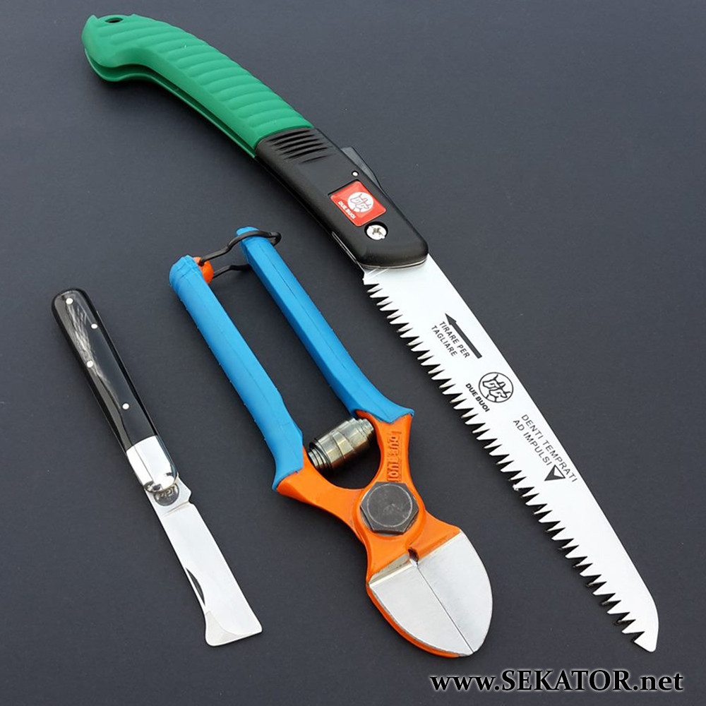 Комплект інструментів Due Buoi: секатор 133/20, ніж для щеплення 203С, садова пила RS180/18