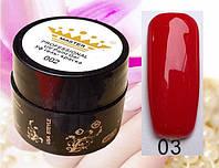 УФ гель-краска Master Professional 5мл №03
