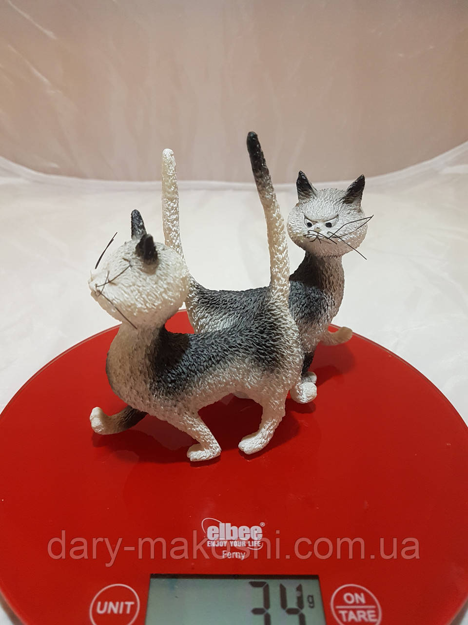 Кот и кошка - встреча