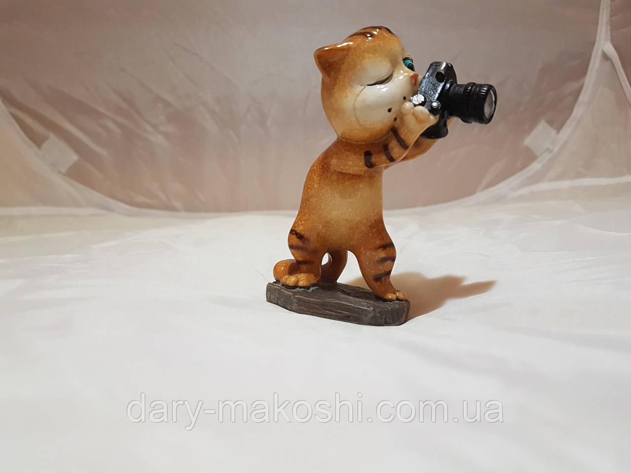 Кот - фотограф