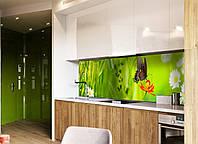 Кухонный фартук Бабочка (пленка для стеновой панели, метелик, мотылек, ромашки, роса, листья, декор фартука)