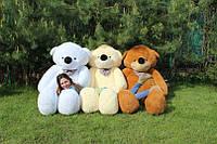 Огромный плюшевый мишка Нестор 220 см.Мягкая игрушка.игрушка медведь.мягкие игрушки украина