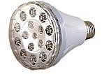 Энергосберегающая светодиодная лампа с аккумулятором и функцией аварийного питания 1895, фото 3