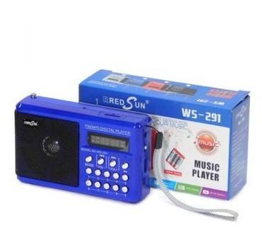 Радиоприемник WS-291