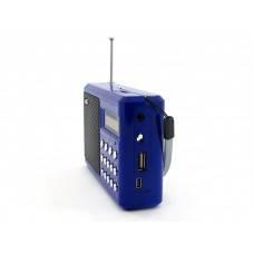 Радиоприемник WS-291, фото 2