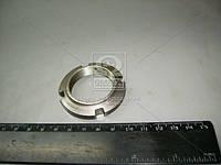 Гайка конической пары (покупной МТЗ) (арт. 52-2308097), rqz1