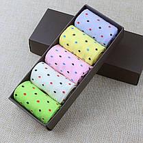 Набор женских носков в коробке подарочный, фото 2