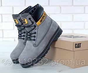 Женские ботинки зимние Caterpillar (мех) (серый)