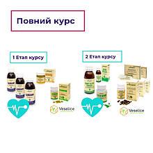 Здорове Серце та Еластичні Судини [Повний курс апітерапії для серцево-судинної системи]