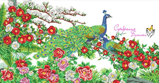 Сб-1-419 Райские птицы