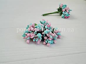 Дрібноцвіт складний рожево-голубий