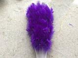 Веер перьевой фиолетовый, фото 2