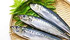 Asahi Dear-Natura Gold EPA (600 мг) + DHA (260 мг) 360 капс на 60 днів, фото 2