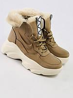Женские зимние бежевые ботинки из нубука с вставками кожи, фото 1