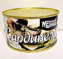 """Рыбная консерва"""" Морской мир"""" сардинелла в масле 240г"""