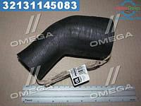 ⭐⭐⭐⭐⭐ Патрубок радиатора Эталон, ТАТА нижний от насоса к радиатору   252550105857DK