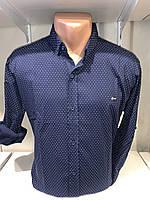 Рубашка мужская, X-Joker стрейч котон.рукав трансформер, узор 2312.001 /купить рубашку