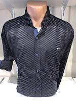 Рубашка мужская, X-Joker стрейч котон.рукав трансформер, узор 2312.002 /купить рубашку