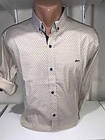 Рубашка мужская, X-Joker стрейч котон.рукав трансформер, узор 2312.003 /купить рубашку