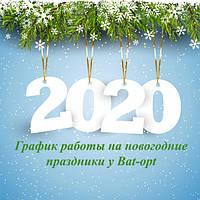 Новогодний отпуск команды Bat-Opt!)))