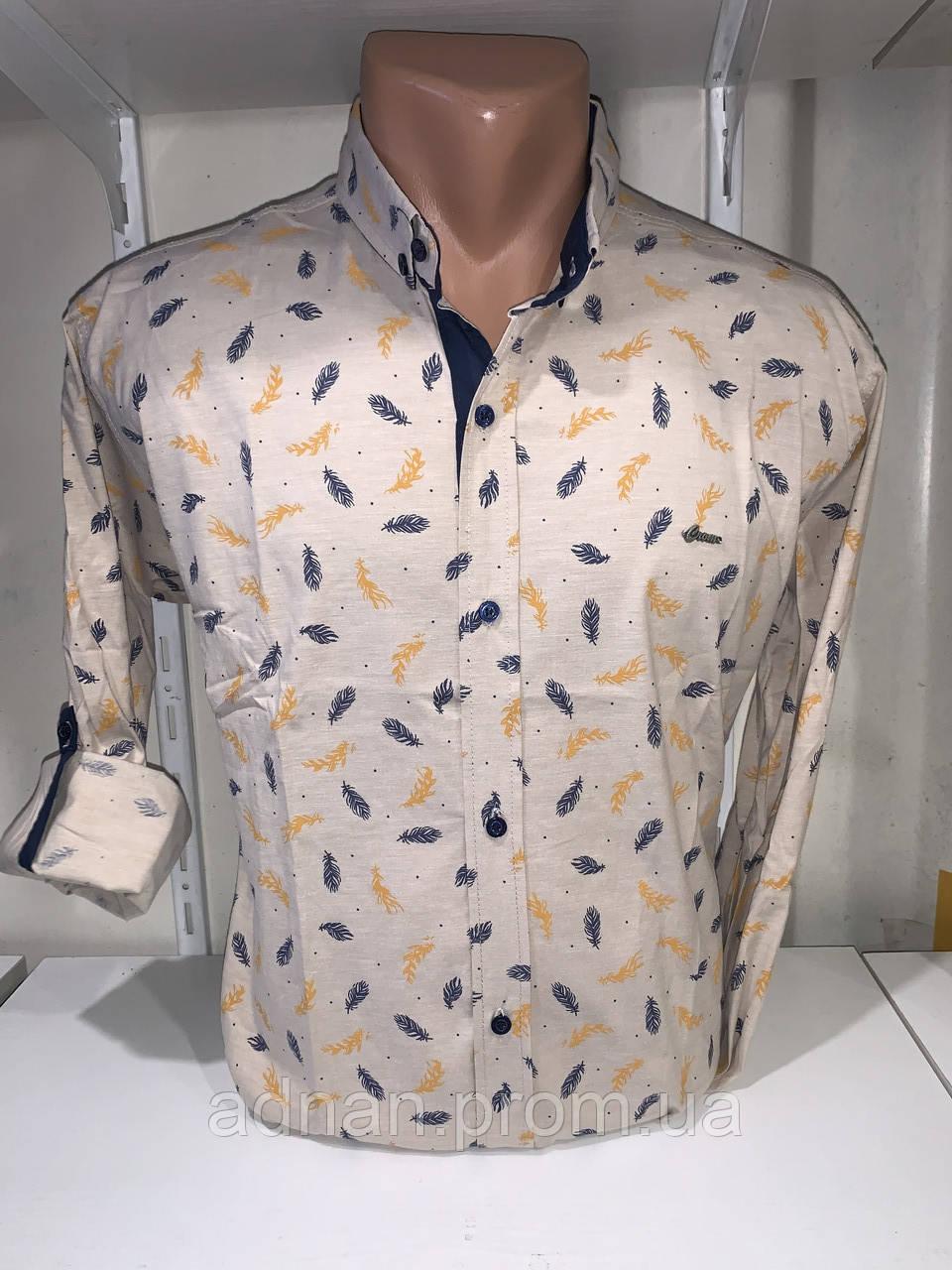 Рубашка мужская, X-Joker стрейч котон.рукав трансформер, узор - перо 2312.010 /купить рубашку