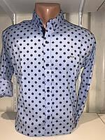 Рубашка мужская, X-Joker стрейч котон.рукав трансформер, узор - горох 2312.014 /купить рубашку