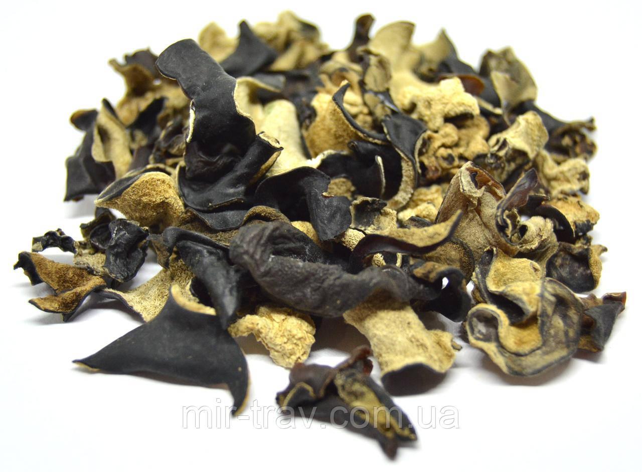 Грибы Муэр (древесный гриб)