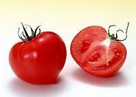 Насіння томату червоного індетермінантного Лагранж F1 (250шт) Libra Seeds (Erste Zaden)